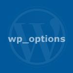 Cómo almacenar información en la base de datos de Wordpress